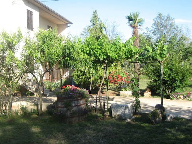 Apartment Anna for 4 pax with AC - Divšići