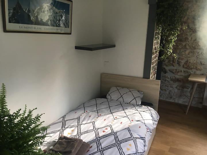 Mont-Blanc: chambre simple 14m2 avec douche