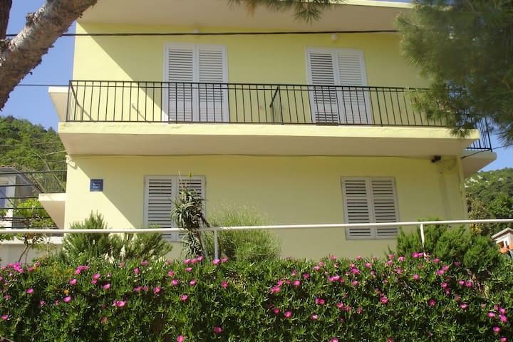 Apartment Mateo (1/6) - MLJET island - Okuklje