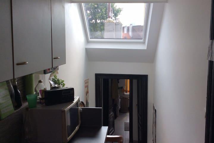 Appartement 1 chambre lumineux et rénové
