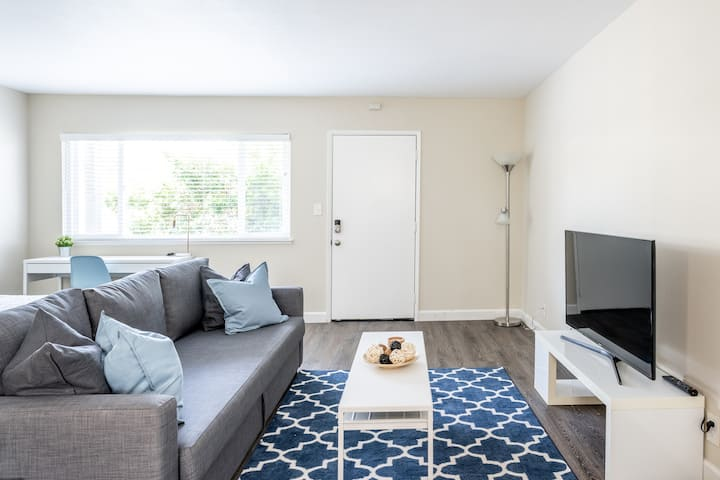Near downtown SJ Fully Furnished, tree top View
