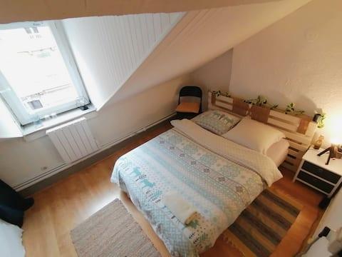 Chambre dans appartement, centre ville proche gare