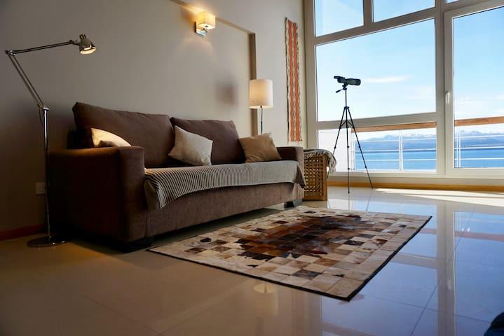 Mirador de la Patagonia