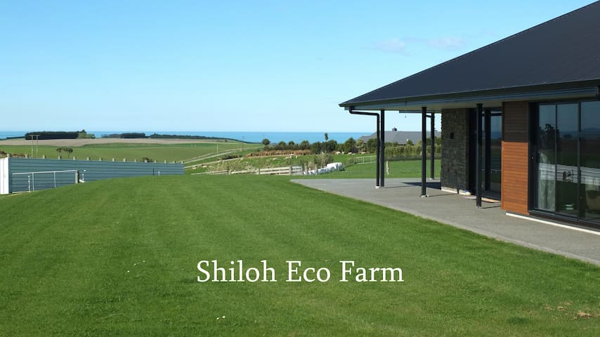 Shiloh Eco Farm, Timaru, St Andrews, New Zealand.