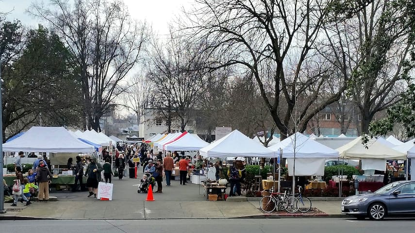 Saturday Farmers Market - directly across the street