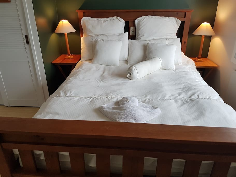 Room Tane with Queen Bed
