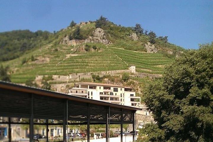 L'Héberge du Rhône- au cœur de Tournon