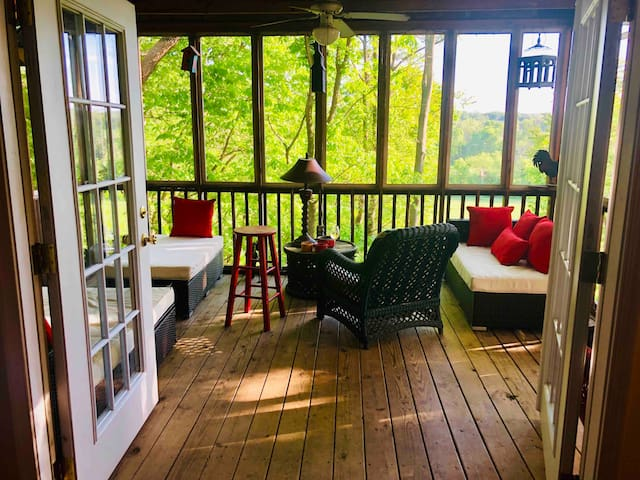 The view of the screened in porch through French double doors