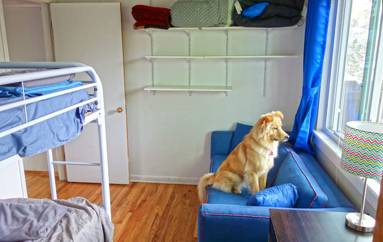 Shared space bunk beds (bottom bunk) - Boulder - House