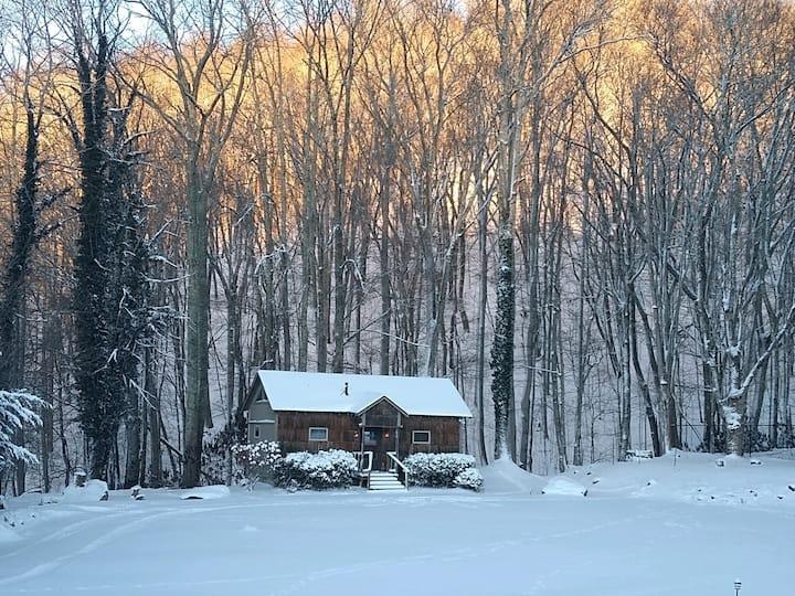 Banner Haven Creekside Cabin