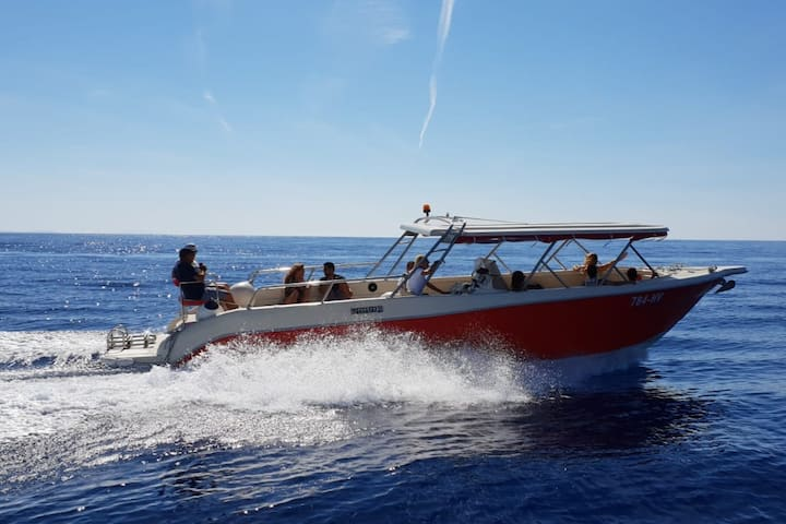 Enzo 35, luxury speedboat Private tour from Hvar