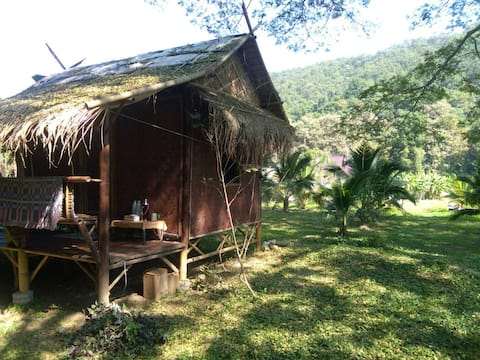 Healing jungle hut by a flowing river