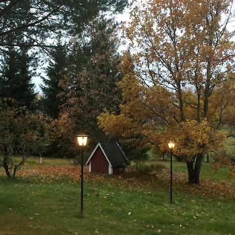 Country holiday - Savonlinna region