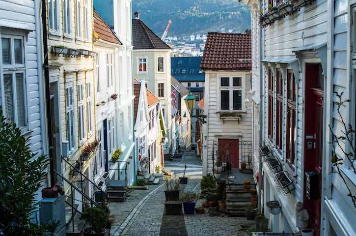 Light apt in charming part of Bergen- Pro handled - Bergen - Leilighet