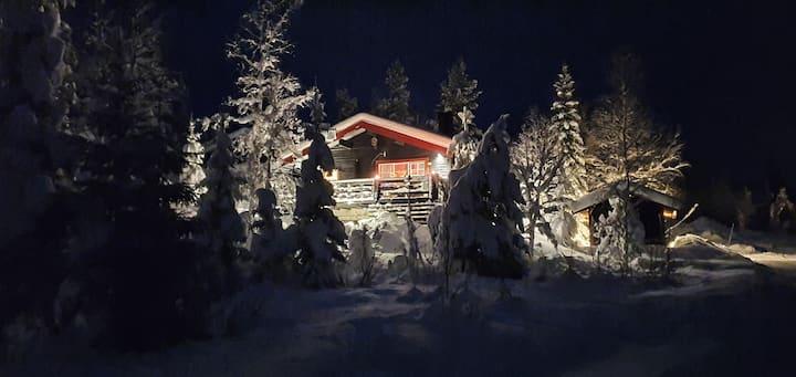 Mysig timmerstuga i Gördalen
