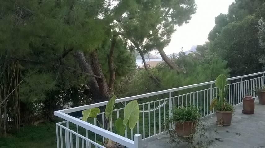 View 2 from veranda