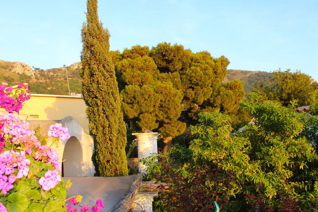 Vista dalla casa lato montagna