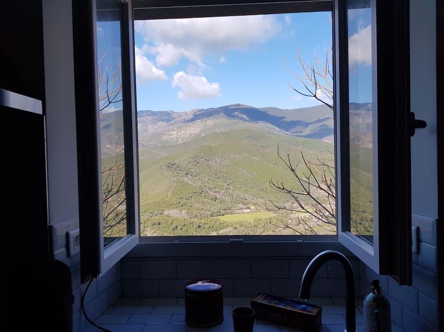 vue de la fenêtre cuisine