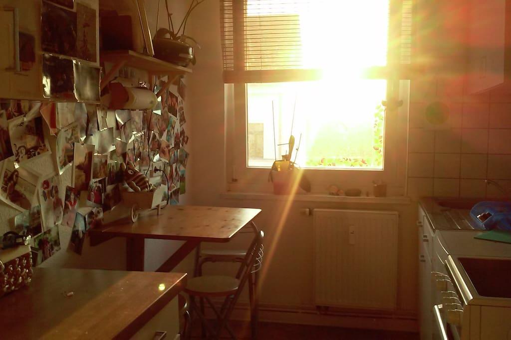 gemütliche Küche für Stammtischstrategen und Freunde gepflegter Unterhaltungen am kleinen, aber feinen Tisch- Herd, Ofen, Kühlschrank, Spülmaschine und Radio für die musikalische Untermaltung