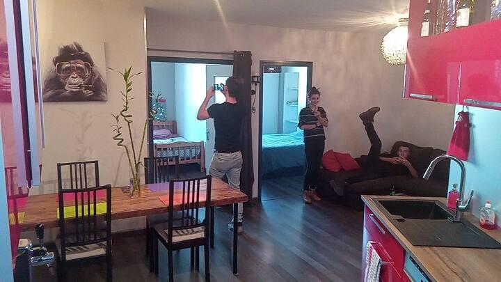Vienne joli appartement avec garage privé