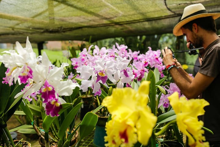 Finca Romelia Orchids & Birds - Manizales - Bed & Breakfast