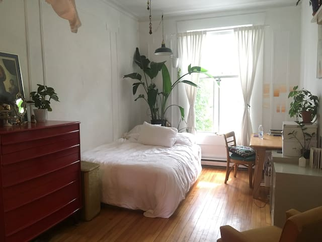 Cute Plateau/Mile-End authentic apartment!