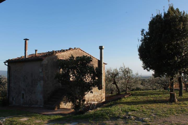 Casale in campagna vicino a Roccatederighi,Toscana - Roccatederighi