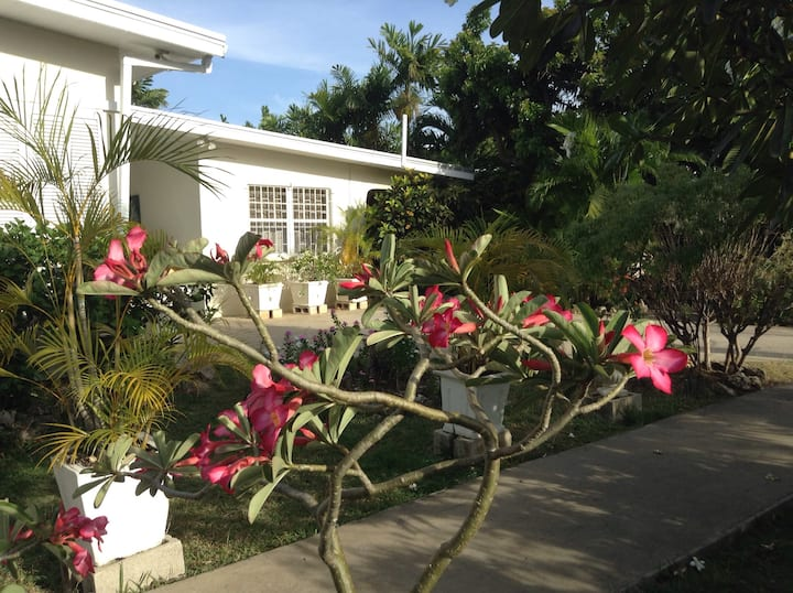 Hibiscus Apt SPECIALS and CLOSE TO BEACH