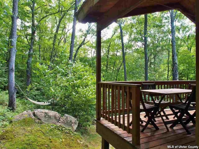 Catskills Mountain Cabin - Pine Hill - Hus