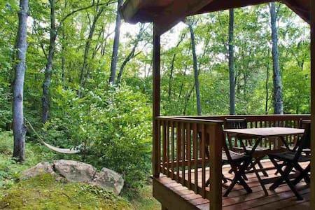 Catskills Mountain Cabin - Pine Hill - House