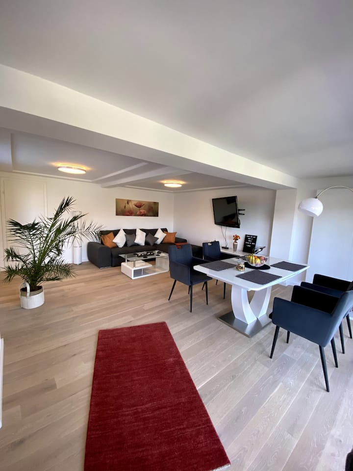 Wohnung mit Rheinblick,Dachterasse und Rheinlounge