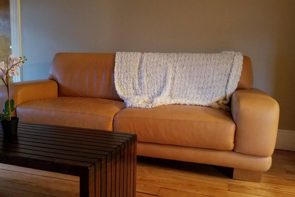 Soft Italian Leather Sofa with Wood Coffee Table