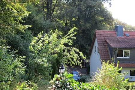 Cude House near Harz/Göttingen with 2 Cats - Einbeck - 独立屋
