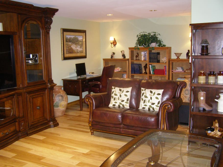 Living room with leather furnishings