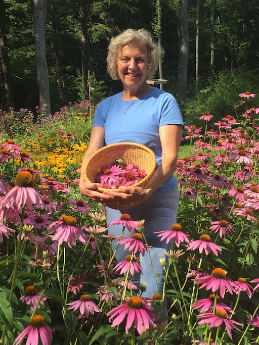 Sunny Day (your host) in the Echinacea Perennial Gardens
