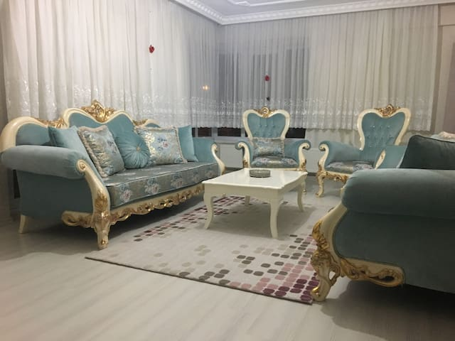 Classic furnitures saloon