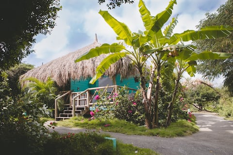 Eco-friendly palapa 'Tortuga'