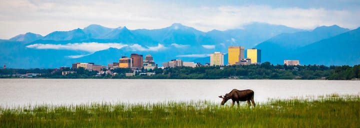 Anchorage Mountain View Escape In The City!