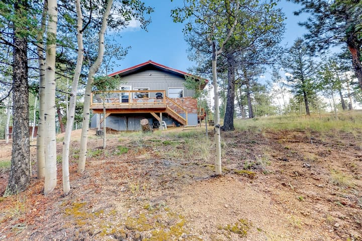 Secluded cabin w/ a wood stove, spacious deck, grill, & amazing mountain views