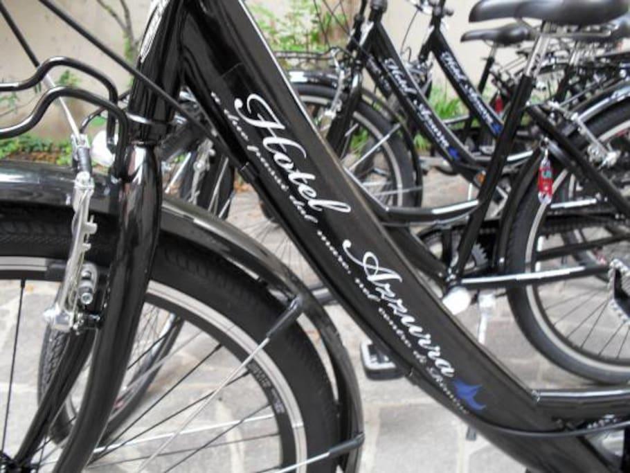 biciclette a disposizione per i clienti