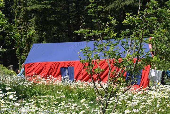 Stunning Hills Cottage Tent