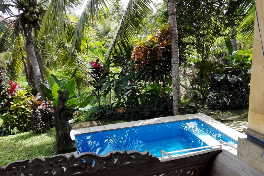 Jacuzzi with Fresh Air