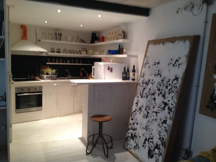 kitchen: electric oven and induction cooking