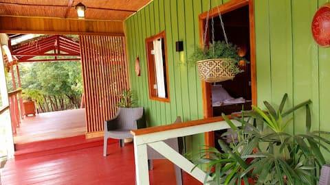 Jungle Lodge nearby Manaus