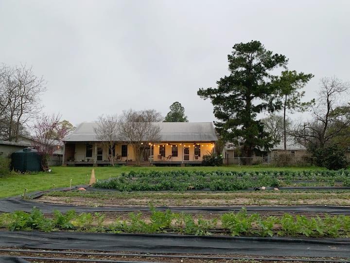 ~Austin's  Original Urban Farm~Downtown~Historic