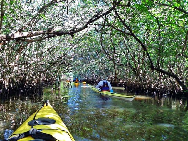 Water Front Kayak-Fishing Haven