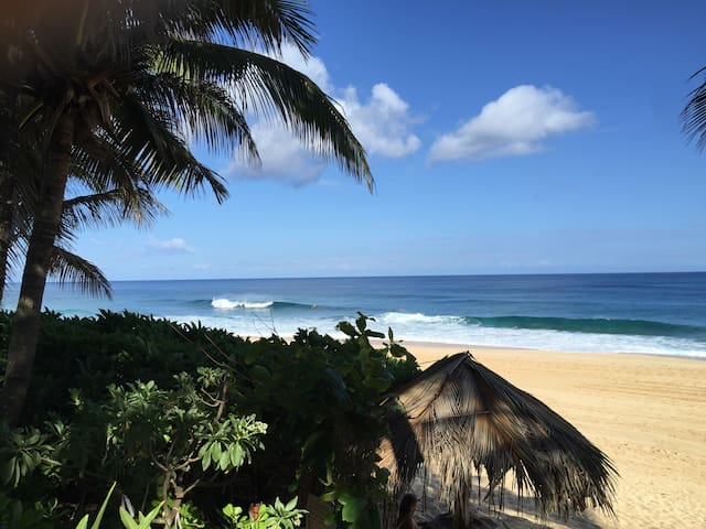 NORTH SHORE BEACHFRONT BY PIPELINE - Haleiwa - House