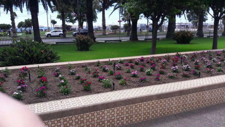 Departamento frente a la Playa, Av. San Martín - Viña del Mar - Wohnung
