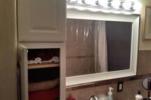 Well-lit bathroom includes hand mirror