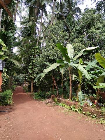 Rutu Agrotourism
